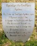 Image for Llywelyn ap Gruffydd Fychan - Llandovery, Carmarthenshire, Wales