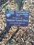 Image for Madelene Victoria Oliver - Botanical Garden of the Ozarks - Fayetteville AR