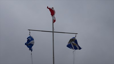 Drapeau de la ville de Waterloo, Québec