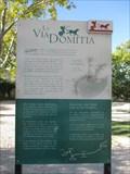 Image for Via Domitia - Glanum/France