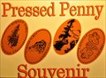 Image for The Petrified Forest Penny Smasher
