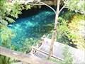 Image for Gran Cenote - Tulum, Quintana Roo, Mexico