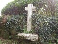 Image for Shaugh Prior Cross