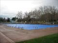 Image for Amador Valley Community Park Pool - Pleasanton, CA