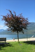 Image for Carolin Fox-Mayes - Nakusp, British Columbia