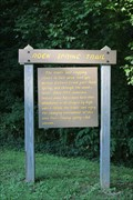 Image for Natchez Trace: Rock Spring Trail nr Tennessee River, Lauderdale Co. AL