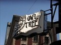 Image for The Owl Tree  -  San Francisco, CA
