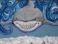 Image for Shark Teeth - Englewood, CO