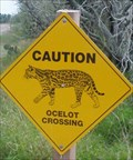 Image for Ocelot Crossing