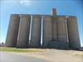 Image for Wheat Silos - Wee Waa, NSW
