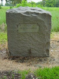A DRT (Daughters of the Republic of Texas) marker. It is #14 on the San Jacinto Battlefield map.