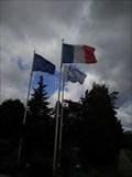 Image for Massy Flag