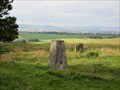 Image for O.S. Triangulation Pillar - West Schurroch, Angus.