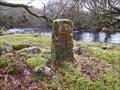Image for WD 31 Boundary Stone,  River Tavy, Dartmoor.