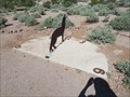 Image for Coyote Sundial in Superstition Mountain State Park - Apache Junction Arizona