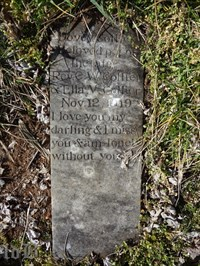 The grave of Dovey, the beloved pet missed by Ella Collier.