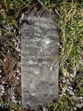 Image for Pet In A Churchyard - Woodville VA