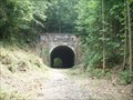 Image for Moonville Tunnel  -  Zileski State Forest, OH