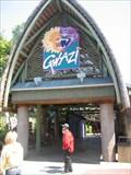 Image for Gwazi - Busch Gardens, FL
