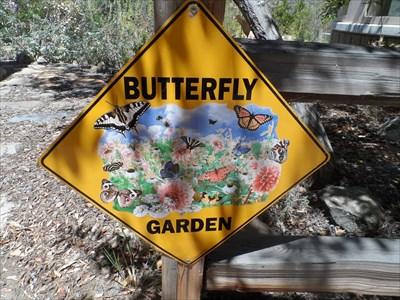Mission Trails Regional Park Butterfly Garden San Diego