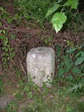 Image for MASDIX West Line Stone 110, 1767, Pennsylvania-Maryland