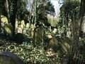 Image for židovský hrbitov / the Jewish cemetery, Praha - Radlice, Czech republic
