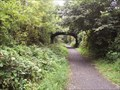 Image for Tavistock Viaduct Walk Nature Reserve, Devon UK