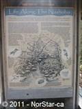 Image for Nashoba Brook Kiosk - Life Along the Nashoba-Beyond the Bank - Acton, MA
