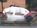 Image for Penn State Nittany Lion @ DuBois, Pa.
