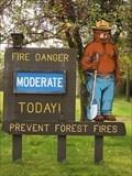 Image for Northome Smokey Bear - Northome, Minn.