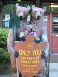 Image for Smokey Bear Family - Lake Arrowhead, CA