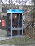 Image for telefonni automat, Brasy