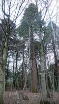 Image for Redwoods, Akay, Sedbergh, Cumbria