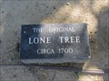Image for Lone Tree - Hayward, CA