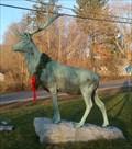 Image for Elk - Kirkwood, NY