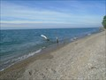 Image for Lake Erie - Rondeau Provincial Park, Ontario