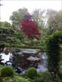 Image for Le Jardin japonais du Château de Courances - Courances, France
