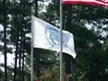Image for Mecklenburg Co. Flag, Charlotte, NC