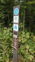 Image for North Country Trail - Potato Hill State Forest, Caroline, NY