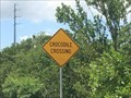 Image for Crocodile Crossing - Key Largo, Florida, USA