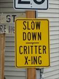Image for Slow Down - Critter Crossing - Ophir, Utah