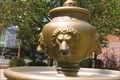 Image for Thirsty Lions - Mottaz Park - Auxvasse, MO