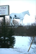 Image for Country Club Homes Horse