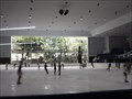 Image for Macquarie [Centre] Ice Rink - NSW, Australia