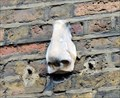 "Image for One of the ""Seven Noses of Soho"" - Meard Street, London, UK"