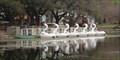 Image for Swan Boats -- Fair Park, Dallas TX