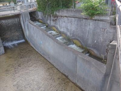 Fischtreppe am Isarwerkkanal - München, Germany
