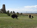 Image for Anthem Bison, West Installation - Broomfield, CO