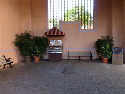 Busch Gardens - Lion.