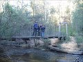 Image for Wilhelmina Falls Suspension Bridge